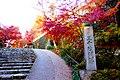 Sanzen-in, Approach to Sanzen-in -1 (November 2014) - panoramio.jpg