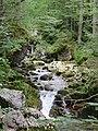 Schwarzenbachtal Kreuth 3.jpg