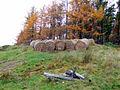 Sciberscross - geograph.org.uk - 601715.jpg