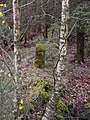 Scots Dyke boundary stone - geograph.org.uk - 353338.jpg