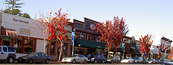 Main Street in Downtown Sebastopol