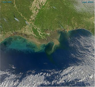Gulf of Mexico - Sediment in the Gulf of Mexico