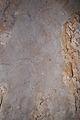 Serpiente Cueva del Niño.jpg