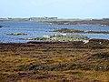 Sheepfold on Loch Druidibeag - geograph.org.uk - 1512080.jpg