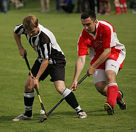 Image illustrative de l'article Shinty