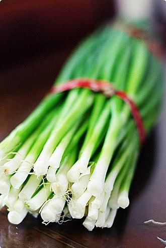 Allium fistulosum - Image: Silpa (Allium fistulosum)