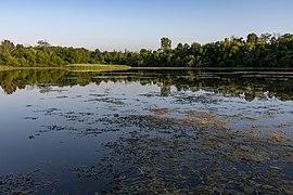Slate Run - Buzzard's Roost Lake 3.jpg