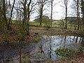 Small pond on Mere Brook - geograph.org.uk - 1741244.jpg