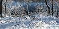 Snowy Mississippi River (15807830585).jpg
