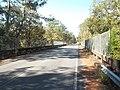 Sopchoppy River FL CR 22 bridge west02.jpg
