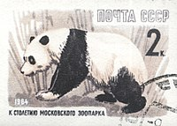 Panda in Moscow Zoo on 1964 Soviet Union 2 kopeks postal stamp