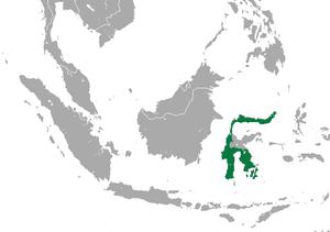 Spectral tarsier - Image: Spectral Tarsier area