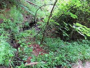 Spodnje Gorje - Image: Spodnje Gorje Slovenia Gravel Pit Mass Grave