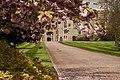 Spring at Windsor (Unsplash).jpg