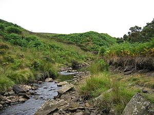 Heathery Burn Cave - Stanhope Burn below Steward Shield Meadow Farm