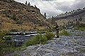 Steelhead Falls (15339740946).jpg