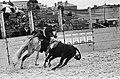 Stierengevecht in Tilburg tgv 65 jarig bestaan van Roomskatholieke Hogeschool, Bestanddeelnr 915-1489.jpg