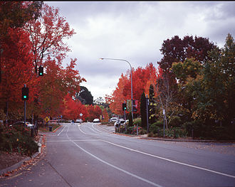 Stirling, South Australia - Main Street in autumn