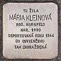 Stolperstein für Maria Kleinova.jpg