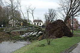 Storm van januari wikipedia