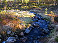 Stream in Tsarmitunturi Wilderness Area 2012.JPG