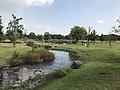 Stream in Yoshinogari Historical Park 1.jpg