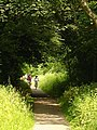 Stroud Valley Cycle Path - geograph.org.uk - 463103.jpg