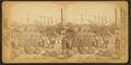 Sugar landing, lower levee, New Orleans, La, by Jarvis, J. F. (John F.), b. 1850.png