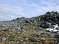Summit of Beinn Liath Mhor Fannaich - geograph.org.uk - 507516.jpg