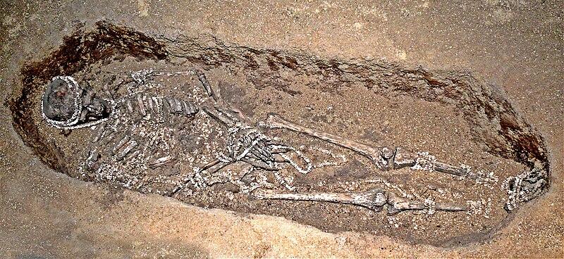 File:Sunghir-tumba paleolítica.jpg