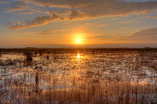 Everglades National Park One-and-a-half million acres in Florida (US) managed by the National Park Service