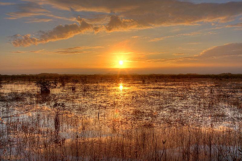 800px-sunset_over_the_river_of_grass2c_npsphoto2c_g.gardner_28925515750729