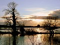 Sunset over the flooded Frome - geograph.org.uk - 1164339.jpg