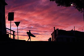 Sunset silhouttes Bondi Beach (Unsplash).jpg