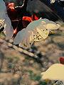 Svln svln4821 ordubad me best top photography resimleri sekilleri photos creative profil maraqli sekil resim fotograflari fotograf ornek resimler (266).JPG
