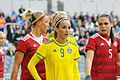 Sweden - Denmark, 8 April 2015 (17086882681).jpg