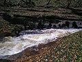 Swollen River Gelt near Hayton - geograph.org.uk - 279532.jpg