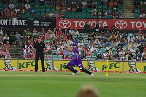 Hobart Hurricanes - Hobart Hurricanes at the SCG on January 15, 2014