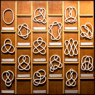 Knot theory - Examples of different knots including the trivial knot (top left) and (below it) the trefoil knot