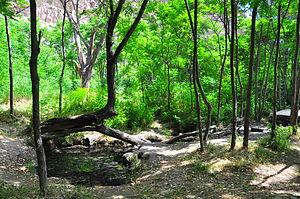 Tandooreh National Park - Tandooreh National Park