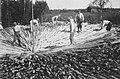 Tar kiln building 1948.jpg
