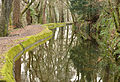 Tavistock Canal near college.jpg