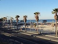 Tel Aviv Promenade.jpg