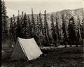 Tent in montane field site.tif