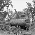 The British Army in Italy 1944 NA15164.jpg