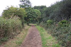 The Freshwater Way cycle path - geograph.org.uk - 62430.jpg