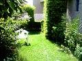 The Garden in summer - panoramio.jpg