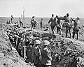 The Hundred Days Offensive, August-november 1918 Q6979.jpg