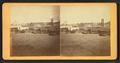 The Levee. St. Louis, Mo, by Boehl & Koenig.png