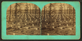 The National cemetery, Arlington, Va, by Bell & Bro. (Washington, D.C.).png